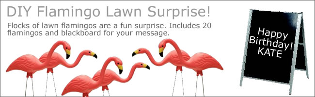 VPink flamingos lawn ornaments for flocking a friend, Auckland Hire
